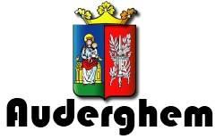 belgorigami_projet_bibliothèque_communale_auderghem