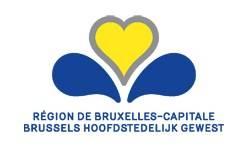 belgorigami_projet_bruxelles-capitale